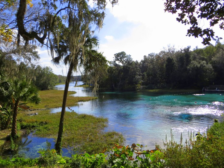 Rainbow Springs, Dunnellon, FL