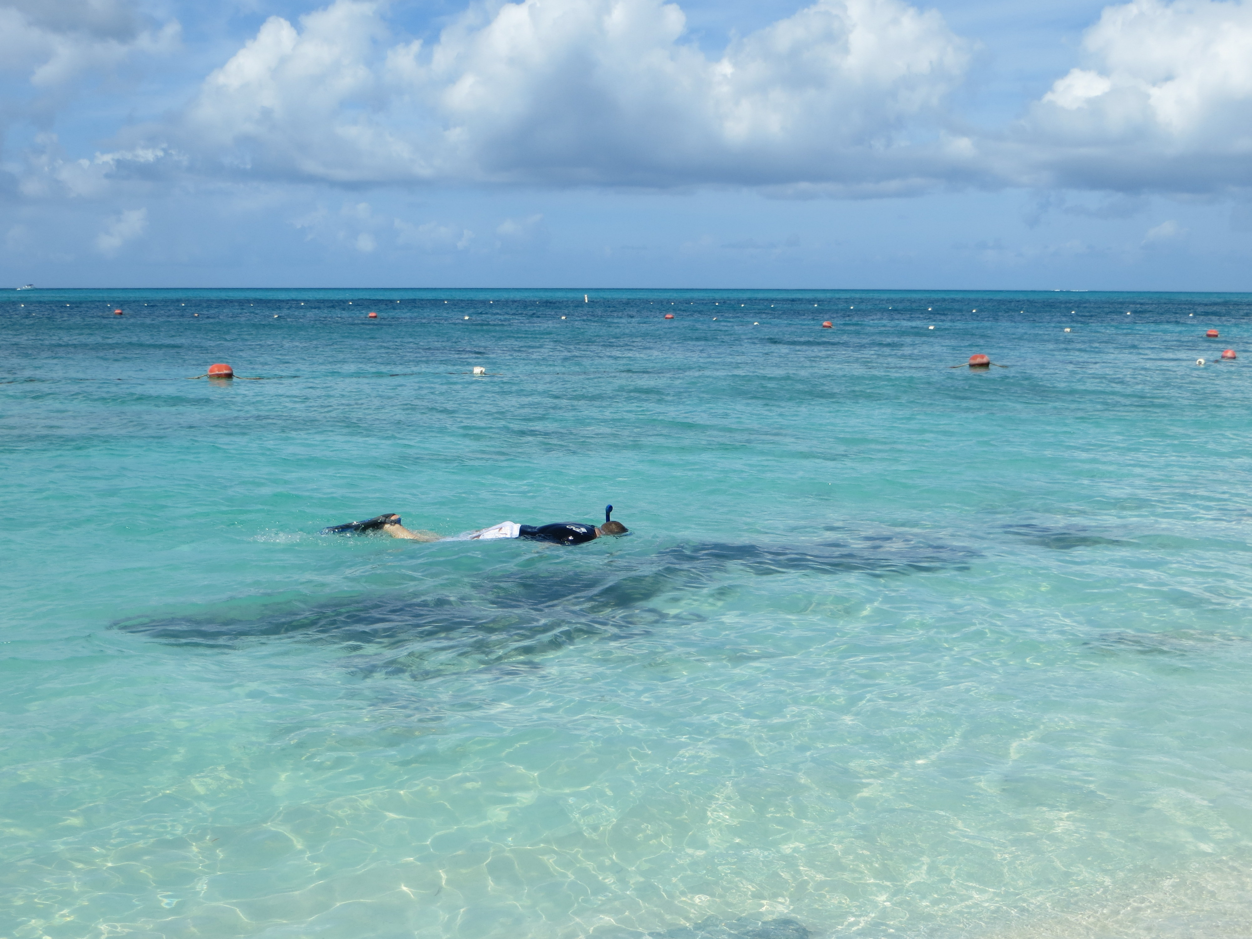 Snorkeling At The Bight Reef