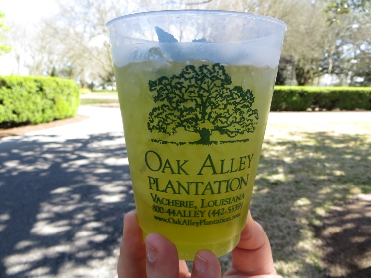 Oak Alley Plantation mint julep is so addicting!