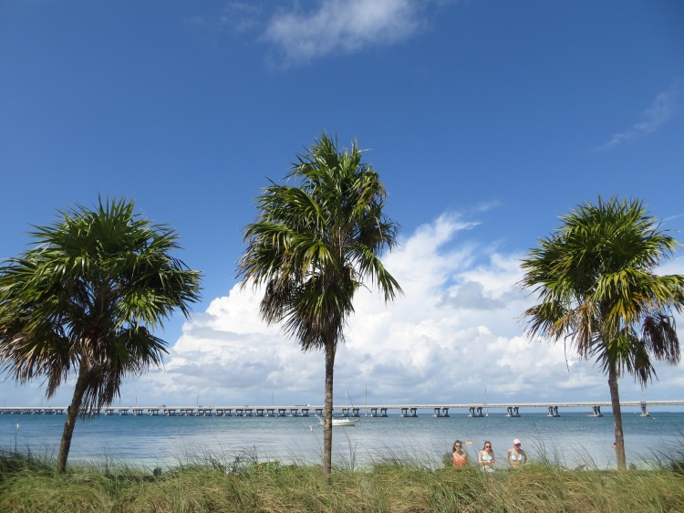 The beaches are lined with palm trees