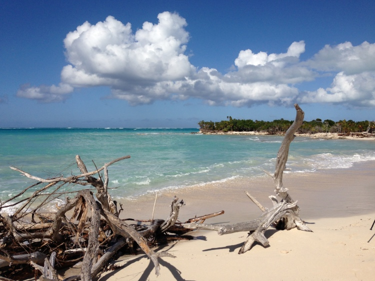 Beach on north side of Little Water Cay (Iguana Island)