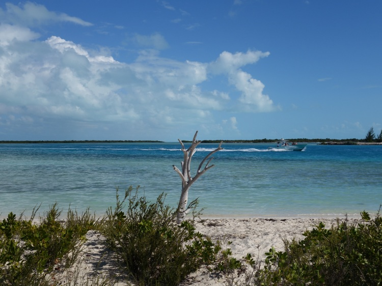 The cay has pristine, beautiful beaches