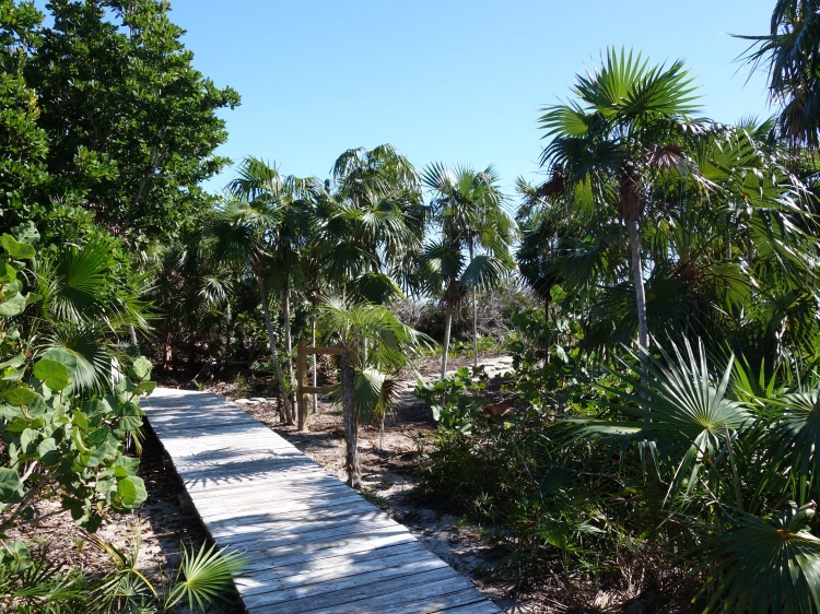Boardwalks on Little Water Cay