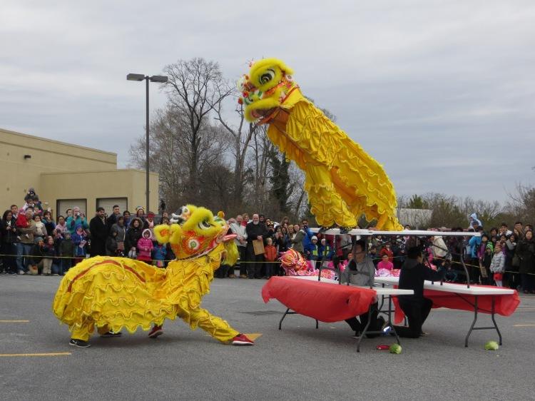 Lion Dance at Atlanta's Lunar New Year 2015 celebration