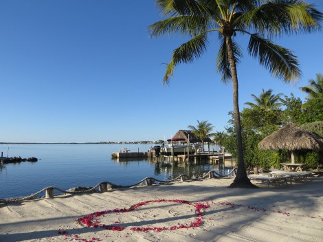 Kona Kai Resort, Gallery and Botanic Gardens: Florida Keys' Exotic Tropical Retreat